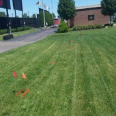 Field with underground utility line markings