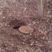Case Study - Missing Manhole in Paris KY